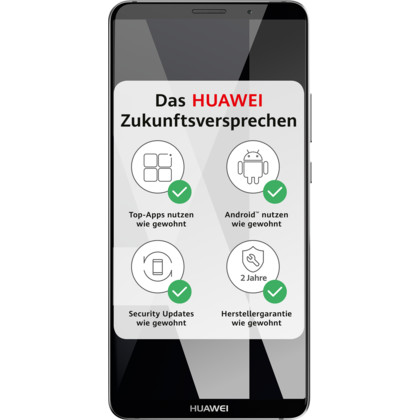 Huawei Mate 10 Pro Dual-SIM titanium grey