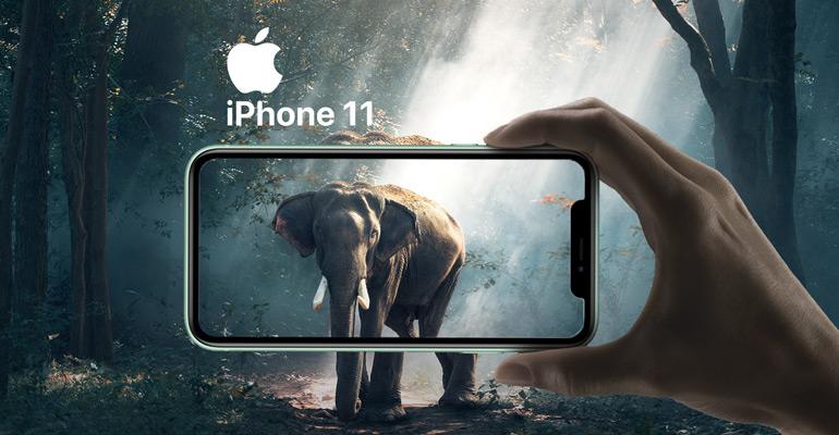 iPhone 11 – die nächste Entwicklungsstufe