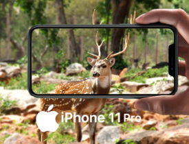 iPhone 11 Pro – das ultimative iPhone