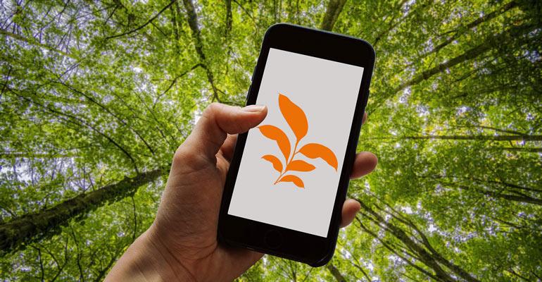 Ein nachhaltiges Smartphone kaufen (Nachhaltigkeit Teil IV)