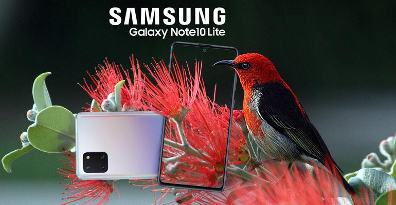 Samsung Galaxy Note 10 Lite – Lite-Version im Großformat