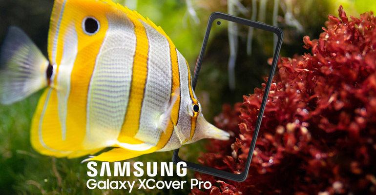Samsung Galaxy Xcover Pro –  vereint Eleganz und Beständigkeit